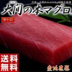 まぐろ マグロ 日本一のブランド「大間の本まぐろ」 中トロ(約100g) 鮪 高級 魚介 海鮮 刺身 プレゼント 贈答 贈り物 お祝い 冷凍 送料無料
