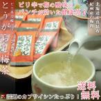 とうがらし梅茶/ピリ辛で酸っぱ〜い!元気の出るお茶♪( 24パック入り) [梅昆布茶][唐辛子梅茶][送料無料][健康茶]