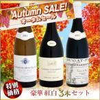 【スプリングセール】豪華 紅白ワイン 3本セット
