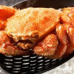 毛ガニ 北海道産 超巨大デラックスサイズ 極上 蟹味噌たっぷりの最高品質 ボイル済み 天然 毛蟹 約1kg×1尾
