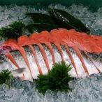 時しらず 鮭 真空パック 北海道産 トキシラズ 化粧箱入り 時不知 姿切身