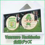 ヴァンラーレ八戸FC公認オリジナルのプリント南部せんべいギフトSTD