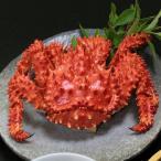 花咲蟹(ボイル姿冷凍) 800g