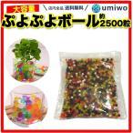 wumio ぷよぷよボール 2500個 カラフルな粒が水で膨らむ youtube発 お祭りや縁日でこどもに 観葉植物の培養土にも