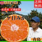 静岡三ケ日みかん 青島 10キロ 黒柳さんちの低農薬 有機肥料栽培  送料無料