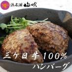 三ケ日牛100% 遠州黒豚100% ハンバーグ詰め合わせ