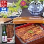 うなぎ蒲焼 浜松地酒 特別純米酒 出世城とわさび塩詰め合わせ 送料無料