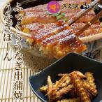 還暦祝い 国産ふっくらうなぎ串蒲焼きとうなぎボーンセット