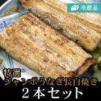 ジャンボうなぎ長白焼き 2本セット