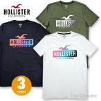 ホリスター メンズ プリント グラデーションロゴグラフィック半袖Tシャツ Hollister Logo Graphic Tee 3カラー ブラック、ホワイト、オリーブ