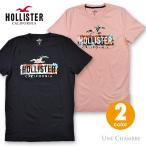 ホリスター メンズ プリント フローラルロゴグラフィック半袖Tシャツ Hollister Logo Graphic Tee 2カラー ブラック、サーモンピンク