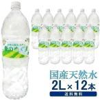 水 2リットル 12本入 ミネラルウォーター ペットボトル 飲料水 みず 飲料 ドリンク 飲み物 森のめぐ美 2L ビクトリー (D)