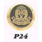 ���� P24 ����ȥ�