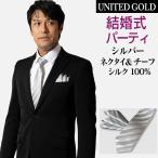 ネクタイポケットチーフセット メンズ シルバー シルク 汚れに強いフッ素加工 7.5センチ幅 レギュラー ak1510sv