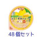 ハウス やさしくラクケア まるで果物のようなゼリー マンゴー 60g 48個