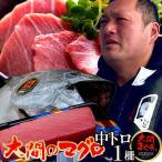 大間のまぐろ 中トロ200g |青森県大間産 本マグロ 刺身 サク切り身 クロマグロ おすすめ 鮪 ごちそう お取り寄せ