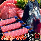 大間のまぐろ 大トロ200g×3柵 |青森県大間産 本マグロ 刺身 サク切り身 クロマグロ おすすめ 鮪 ごちそう お取り寄せ