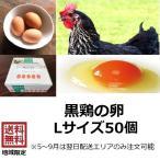 黒鶏の卵 Lサイズ 50個 黒鶏 卵 たまご 鶏卵 赤玉 生卵 生たまご 卵かけご飯