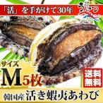 活蝦夷あわびМ(70/80g)5枚入 ギフトにも最適 送料無料 BBQに!