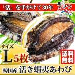 活蝦夷あわびL(90/100g)5枚入 ギフトにも最適 送料無料 BBQに!決算セール!3月末までの限定特価!