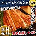 うなぎ 蒲焼き 国産最高級 四万十うなぎ お取り寄せグルメ 詰め合わせ ギフト 鰻