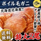毛蟹 - 毛ガニ 特大 北海道近海産 1kg ボイル 毛がに 毛蟹 500g×2尾 かに カニ 蟹 けがに 送料無料