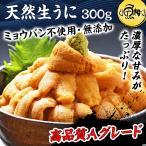 海胆 - 生ウニ チリ産 うに 刺身用 400g ミョウバン不使用 無添加 冷凍 生うに ウニ
