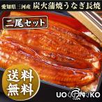 特大ウナギ炭火蒲焼長焼 愛知三河一色産うなぎ 約160g×2尾セット