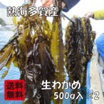 ショッピング朝までクール 熱海多賀産 養殖 生わかめ 生ワカメ 約500g入×2(約1kg)