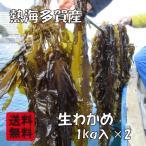 ショッピング朝までクール 熱海多賀産 養殖 生わかめ 生ワカメ 約1kg入×2(約2kg)