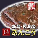 新潟・佐渡産 天然 あんこう アンコウ 一匹丸もの 3kg以上 送料無料