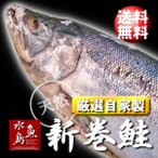 厳選「新潟産・天然 新巻鮭」 5kg物「送料無料」