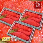 新潟産 生筋子(生いくら)季節限定「ずっしり大粒 生すじこ」 3kg 送料無料