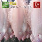 鰈魚 - 新潟産 旨味凝縮・ヤナギカレイ 一夜干し 大4尾(400〜470g)