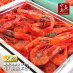 甘エビ「新潟・佐渡産 南蛮エビ」獲れたて生・刺身用 大サイズ500g(冷蔵)