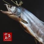 超厳選「塩引鮭」8kg物 冬季限定「送料無料」