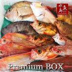 厳選 日本海の鮮魚セット「海におまかせ・大漁箱 プレミアムBOX」 大満足詰め合わせ 送料無料