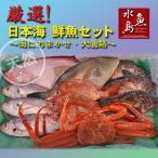 其它 - 厳選 日本海の鮮魚セット「海におまかせ・大漁箱」 大満足詰め合わせ