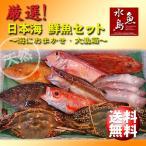 厳選 日本海の鮮魚セット「海におまかせ・大漁箱 たっぷり贅沢編」 大満足詰め合わせ