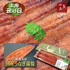 父の日ギフト 土用丑の日 国産 鰻うなぎ蒲焼き ふっくら厳選素材 約30cm特々大 約200g×1尾