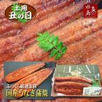 父の日ギフト 土用丑の日 国産 鰻うなぎ蒲焼き ふっくら厳選素材 約30cm特々大 約200g×2尾