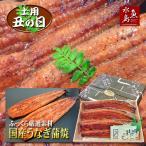 父の日ギフト 土用丑の日 国産 鰻うなぎ蒲焼き ふっくら厳選素材 約30cm特々大 約200g×3尾 送料無料