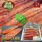 父の日ギフト 土用丑の日 国産 鰻うなぎ蒲焼き ふっくら厳選素材 約30cm特々大 約200g×4尾 送料無料