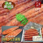 父の日ギフト 土用丑の日 国産 鰻うなぎ蒲焼き ふっくら厳選素材 約30cm特々大 約200g×5尾 メガ盛り1kg 送料無料