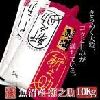 魚沼産新之助(令和2年産)10kg(5kg×2)【送料無料(北海道・九州・沖縄は除く)】