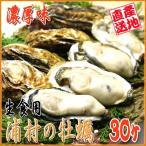殻付き牡蠣 生食用 30入り 冬の味覚 ダイレクト便  伊勢の国 浦村産
