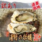 殻付き牡蠣 30入り 訳あり 焼き牡蠣用 伊勢の国 浦村産 ダイレクト便