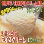 ショッピングアイスクリーム スーパープレミアム アイスクリーム 120ml 9本  バニラ味 御贈答用化粧箱入り