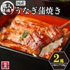 滋賀県WEB物産展 国産うなぎ蒲焼 2尾 (1本約160g)  1本焼き 最高級 鰻 ウナギ 魚真