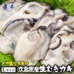 お中元ギフト 御中元 かき カキ 牡蠣 大粒 広島産 剥きかき1kg(30個前後 2L)